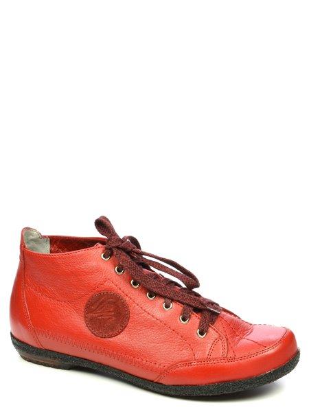 Спортивные ботинки Maciejka. Цвет #####. Категории: Maciejka - модель №05234 - интернет-магазин mir-obuvi.com.